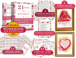 Proverbs 31 Woman Bible Study Toolkit