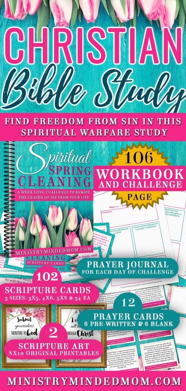 Spiritual Spring Cleaning Challenge Plus Workbook eKit
