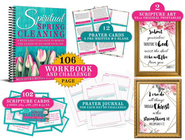 Spiritual Spring Cleaning Christian Bible Study Toolkit